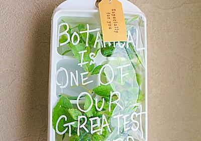 100均製氷皿で簡単!壁掛けボタニカル テラリウム - 暮らしニスタ
