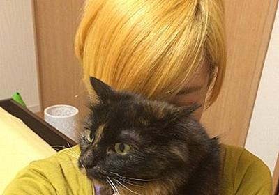 金髪にした時の利点・欠点・ケア方法 | 飛び猫