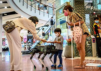 消毒液配るロボット犬が注目の的、タイ商業施設 写真9枚 国際ニュース:AFPBB News
