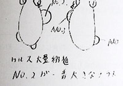 小保方氏の実験ノート、代理人が一部を公開:朝日新聞デジタル