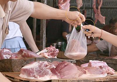 なぜ中国の市場から世界中に脅威を及ぼすウイルスが広まってしまうのか? - GIGAZINE