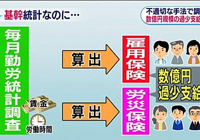 「国際的に日本の統計に信頼が損なわれるおそれ」雇用保険や労災保険で過少支給も | 注目の発言集 | NHK政治マガジン
