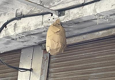 """ニノマエハジメ/u3 on Twitter: """"まじ効果あるな 蜂類一切来なくなったわ 俺の手作りダミー蜂の巣やるやん https://t.co/ZcAHSgeJAb"""""""