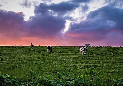 6月10-11日の写真活動 夕方の芦別市新城の風景~歌志内市かもい岳山頂の星空 - 北海道民ブルワリーのブログ