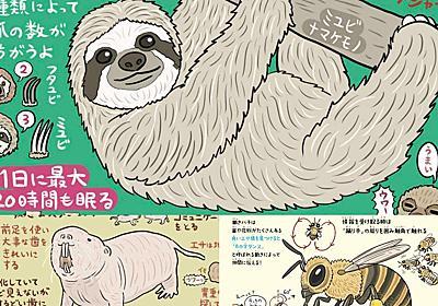ナマケモノはサボるために「命をかける」 ふしぎな生き物の生態から学ぶ処世術|至高の無駄知識(寄稿:ぬまがさワタリ) - はたラボ ~パソナキャリアの働くコト研究所~