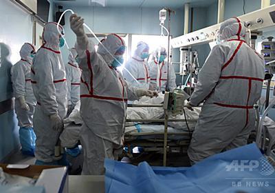 FAO、中国に鳥インフル対策強化求める 写真1枚 国際ニュース:AFPBB News