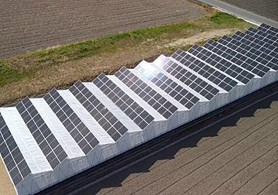太陽パネル×シイタケ栽培…農業と売電 2つ収益見込める新しい農業の形【岡山発】
