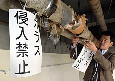 「カラス侵入禁止」警告文、なぜか効果 東大の研究施設:朝日新聞デジタル