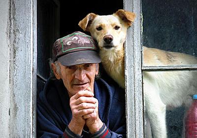 男性と飼い犬の生殖能力が共に低下する可能性が指摘される、その原因とは? - GIGAZINE