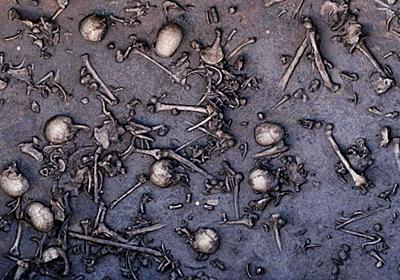 1本の人骨から明らかとなった「人類の流れを変えた4000人規模の大戦争」とは? - GIGAZINE