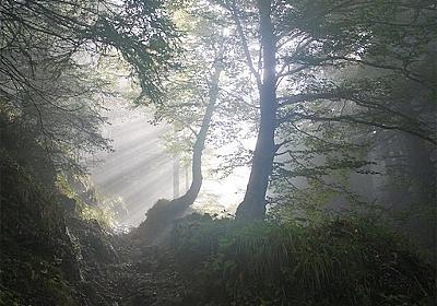 【日常を楽しむ】早起きとは才能なのか? あさイチの行動で人生のベクトルを変える - 【シンプルライフ】Another skyを探す旅