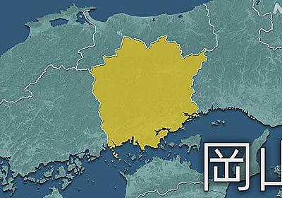 岡山県 新型コロナ 189人感染確認 2日連続で過去最多を更新   新型コロナ 国内感染者数   NHKニュース