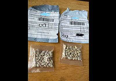 Mysterious seeds from china sent to US, officials say   Tacoma News Tribune