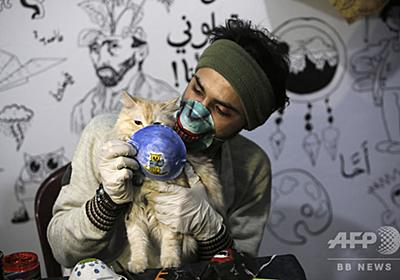 猫も新型コロナ感染 ベルギーで確認 写真3枚 国際ニュース:AFPBB News