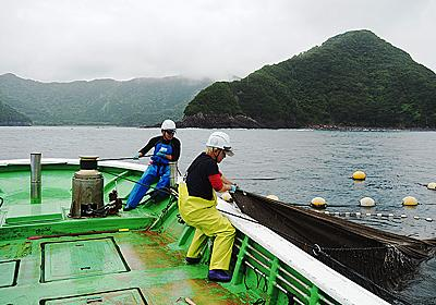仕入れ目的でもカネのためでもない 東京の居酒屋が漁業に参入した切実な現状 (1/5) - ITmedia ビジネスオンライン