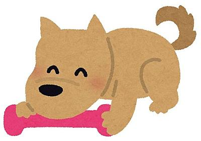 「破壊された犬のおもちゃの中から、こんなメッセージが出てきた…」:らばQ