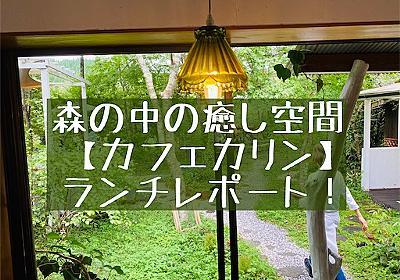 cafe Karin(熊本南小国町)でランチ!森の中のジブリみたいなカフェでした - 旅好きアラサー女子の世界一周ブログ
