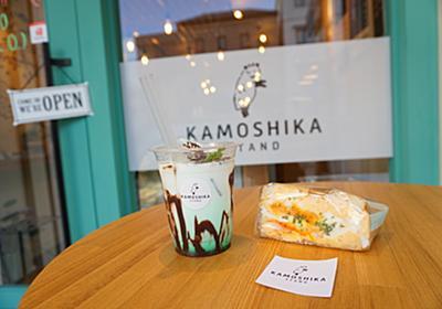 松本城周辺を愛犬と早朝さんぽ【KAMOSIKA 】 - まめうに日記
