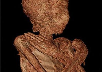エジプトの「妊婦のミイラ」、世界で初確認 ポーランド 写真9枚 国際ニュース:AFPBB News