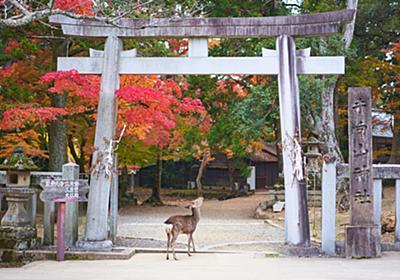 The Best Places to Visit in Nara | Japan Wonder Travel Blog
