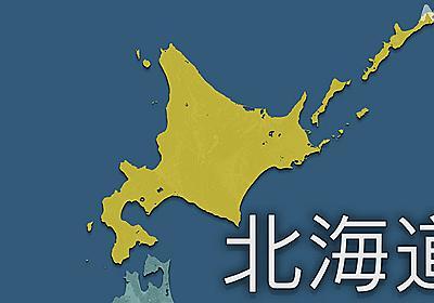 北海道 新型コロナ 過去最多の529人感染確認   新型コロナ 国内感染者数   NHKニュース