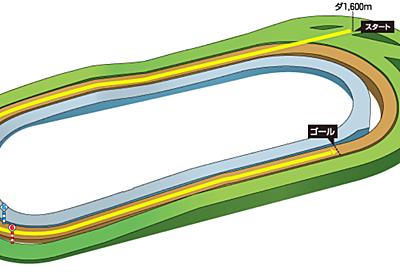 第336R 京都競馬 京阪杯(GⅢ) 参考データ - へっぽこ競馬LIFE