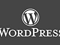 WordPress で Ajaxを利用する | バシャログ。