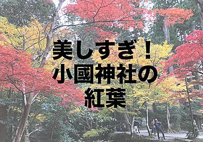 【小國神社】遠州の小京都で紅葉とグルメを楽しむ休日はいかが? | 妻がちんぶりだもんで