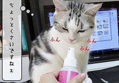 猫の道具 ~むくの弱点~ - 猫と雀と熱帯魚