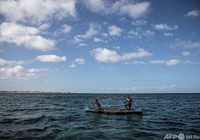 カメ食べて19人死亡 マダガスカル 写真1枚 国際ニュース:AFPBB News