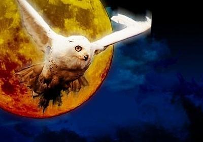 映画「ラプラスの魔女」主演は櫻井翔、広瀬すずと福士蒼汰が共演、原作は東野圭吾 | あらすじ大全