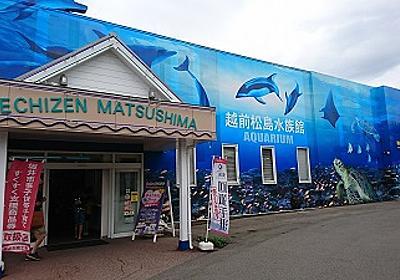 1泊2日、子連れ旅行 in福井 その2 ~越前松島水族館へ行きました~  - For Mom  -すべてのお母さんへのメッセージ-