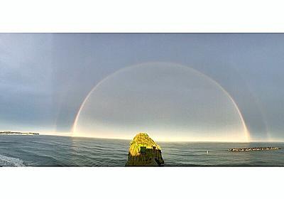 今日は虹の日 ダブルレインボー動画 追記版 | ハムスターのブログハムちゃん家族
