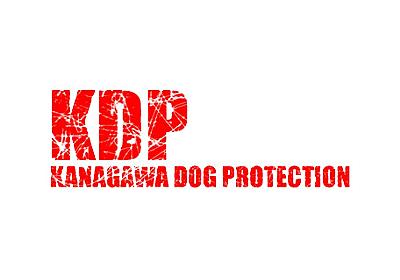 特定非営利活動法人 KDP KANAGAWA DOG PROTECTION - 神奈川ドッグプロテクション:神奈川県動物保護センター公認ボランティア