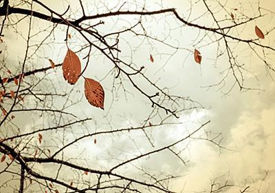 体も懐も寒い時は心を温めましょう。|まりん(๑˃̵ᴗ˂̵)の金運日記(100万円女子)
