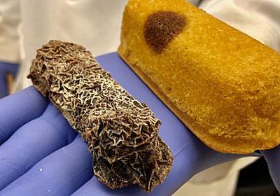 科学者が「賞味期限を8年も過ぎてミイラ化したお菓子」に夢中になっている理由とは? - GIGAZINE