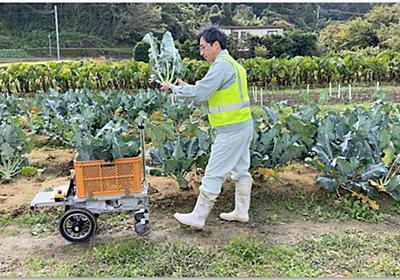 機械学習により、カメラのみで人を追従 特殊なマーカーも不要「収穫サポートロボット」アトラックラボが佐賀大学 佐藤和也教授らと共同開発 | ロボスタ