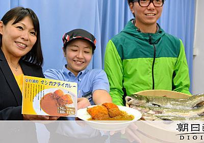 琵琶湖の厄介者、CoCo壱カレーに 限定発売中:朝日新聞デジタル