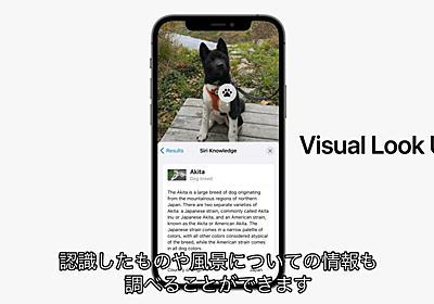 macOS 12 Montereyでは一部の言語環境で機械学習を利用し写真から犬や猫の品種、花の種類、アートや本のタイトル、建築物の詳細を表示する「Visual Look Up」が可能に。