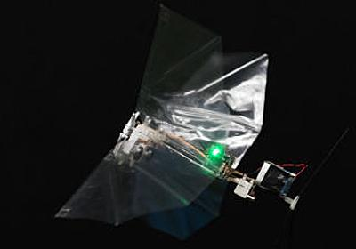 虫の動きをマネて急旋回や急加速が可能になった高い敏捷性を誇る飛行ロボット「DelFly Nimble」 - GIGAZINE