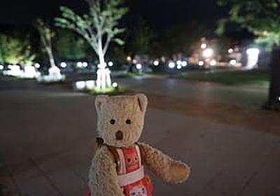 夜の「京都市動物園」。秋の夜間開園。レッサーパンダに会いに・・・ - ネコのミモロのJAPAN TRAVEL (Mimoro the cat:JAPAN TRAVEL)