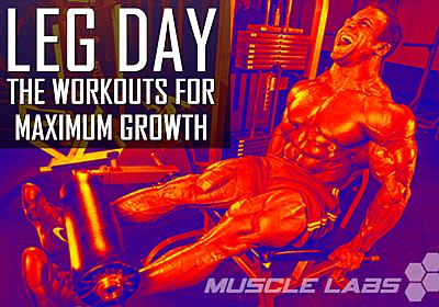 Leg Exercises - For Strength and Mass   Muscle Labs USA