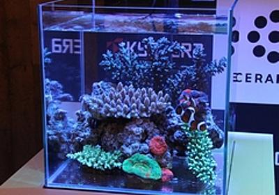 京セラ、サンゴがよく育つLEDを開発――太陽光を再現 - EE Times Japan