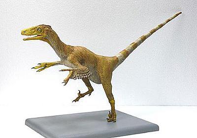 福井県で新種の恐竜 学名は「フクイべナートル・パラドクサス」 - ITmedia NEWS