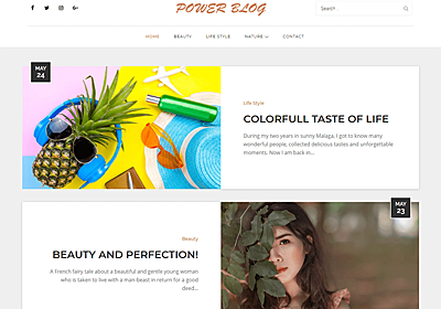 Power Blog – WordPress Theme Review