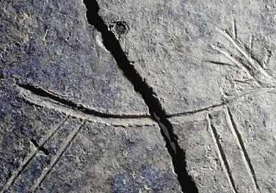 日本最古「三種の神器」が出土。弥生時代の早良平野に繁栄した王国があった|【西日本新聞ニュース】