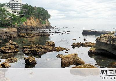 茨城沖に海底油田か、採掘探査中 巨大ガス田の跡も発見:朝日新聞デジタル