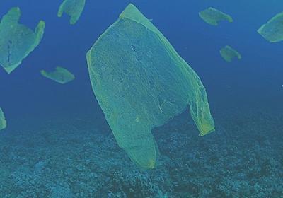 底引き網、どっしり手ごたえ レジ袋漁が最盛期 大阪湾