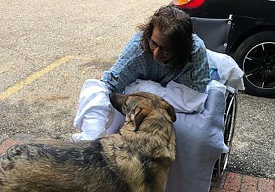 CNN.co.jp : 飼い犬になめられ感染症発症、両手両脚を切断 米女性