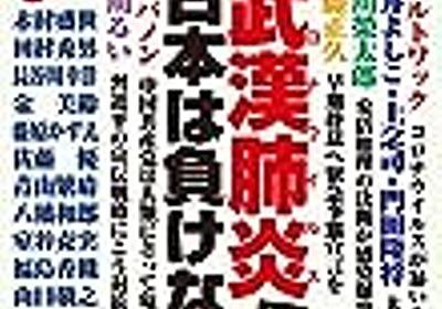 《感想》『有名リベラル論客を多数提訴〜「実子誘拐」を巡る注目の裁判 --- 牧野 のぞみ』 - ishiimasa's blog
